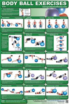 Exercise Charts for Stability Ball (Balance Ball, Swiss Ball) and BOSU Body Ball Core Exercise Laminated Poster Chart – Total Core Workout – Personal Trainer Fitness Program for Women & Men Swiss Ball, Balance & … Exe . Core Muscle Exercises, Swiss Ball Exercises, Stability Ball Exercises, Core Stability, Belly Exercises, Toning Workouts, At Home Workouts, Ball Workouts, Workout Ball