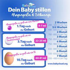 Dieses Chart gibt Aufschluss über die Muttermilchmenge beim Stillen und die Magengöße des Babys nach der Geburt. Die Milchmenge beim Stillen passt sich dem Bedürfnis des Babys an. #Stillen #Muttermilch #Baby