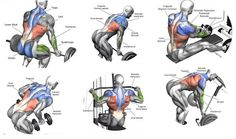 Back Exercises More