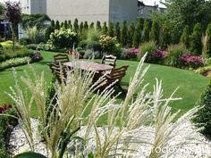Ogród mały, ale pojemny;) - strona 93 - Forum ogrodnicze - Ogrodowisko
