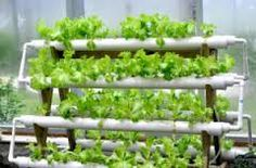 4 tirer ebb and flow pvc pipe hydroponic plan - Google Search