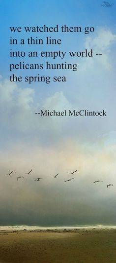 Tanka poem: I've asked the sparrows -- by Michael McClintock ...