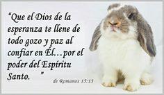 Que el Dios de la esperanza te llene de todo gozo y paz al confiar en el... por el poder del espiritu santo. Romanos 15:13