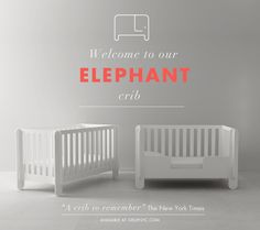 Introducing the Elephant