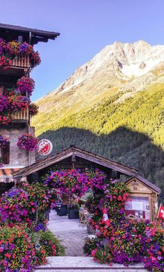 Switzerland.......