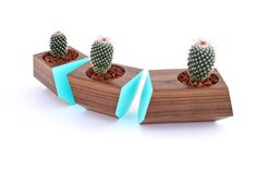solid walnut boxcar succulent planters... AWESOME
