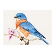 Bluebird 5x7 Fine Art Print of Watercolor Bird by SaylorWolfWorks,