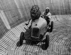 Wall of death rides (with lions) popular in the 1930's as fairground entertainment.