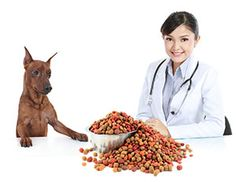 Does Your Vet Push Raw Food Or Prescription Dog Diets ?