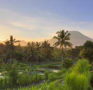 First time Bali: where to eat, stay and play