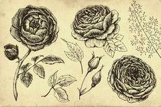 Vintage Floral Set by Lembrik's Artworks on @creativemarket