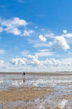 Texel, Noord-Holland. Strand, Beautiful Sites, Am Meer, Holland, Sandy Beaches, Solitude, Marines, Netherlands, Fine Art