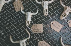 Skull gift tags - great idea