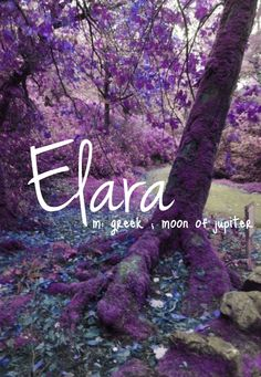 Girls Name: Elara; Name Meaning: N/A, although it is the name of one of Zeus lovers who gave birth to Tityus and it is one of Jupiters moons; Name Origin: Greek