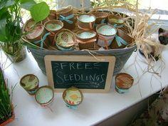 peat pot baby shower party favors