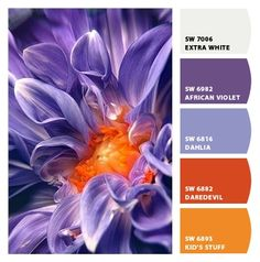 purple dahlia - Paint colors from Chip It! by Sherwin-Williams