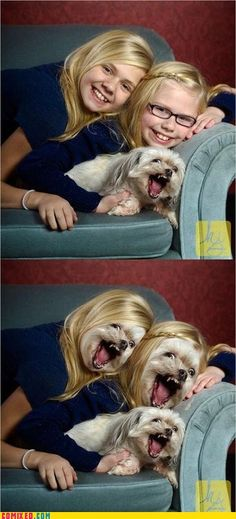 Doggy Face Swap