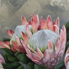 Proteas On Canvas Protea Art, Protea Flower, Botanical Illustration, Botanical Prints, Illustration Art, Watercolor Flowers, Painting & Drawing, Flower Art, Painting Inspiration