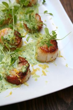 Seared Scallops with Creamy Basil Pesto Sauce ~    This dish is so simple and looks so impressive on a plate. I garnished these beauties with a little squeeze of lemon juice and zest to bring out some brightness and then topped each scallop with micro cilantro and micro basil to balance out the richness of the pesto. Serve with your favorite pasta or roasted veggies and it turns into a beautiful meal.