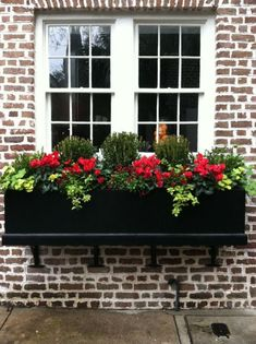 Window boxes bring the garden into the home. Through the windows you can often see beautiful flowers and plants further away from the house, but you may not be able to see plantings near the house. Window Box Plants, Fall Window Boxes, Window Box Flowers, Window Planter Boxes, Planter Ideas, Indoor Window Boxes, Garden Windows, Outdoor Flowers, Wonderful Flowers