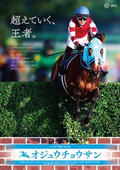 Race Horses, Horse Racing, Thoroughbred, Print Ads, Equestrian, Derby, Dog Cat, Advertising, Japan