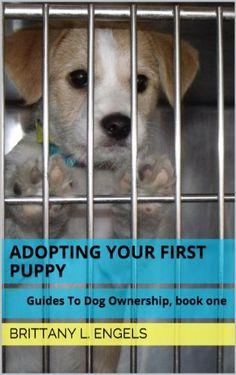 Puppy vs. Dog - blogger.com