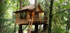 TreeHouse Photos at Treehouse Point in Fall City Washington