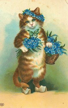 """""""Forget Me Nots"""" Flowers and Cat postcard"""