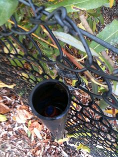 This geocache was called Sea Monkey Central and required the geocacher to fill the tube up with water in order to snag the cache.