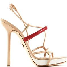 Love Today's Daily Shoe