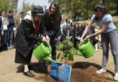 Holocaust survivor Hanna Pick (front L), a friend of Dutch diarist Anne Frank, and her granddaughter Tamar Meir (C) water a chestnut tree sapling planted at the Yad Vashem Holocaust Memorial in Jerusalem. The sapling is from a tree that Anne Frank could see from her attic hiding place.
