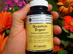 Quantum Nutrition - Best Digestive Enzyme I need to buy and test and then give my opinion.
