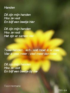 spreuken en gezegden toon hermans 63 beste afbeeldingen van Toon Hermans gedichtjes.   Lyrics  spreuken en gezegden toon hermans