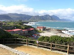 This is a pic of the town of Hermanus in South Africa. It is actually the #1 place for land whale watching.     Awesome South Africa