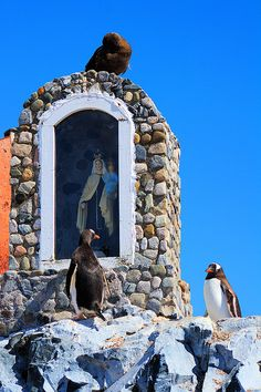 Ever wondered about the religious affiliations of penguins? (Wayside Shrine in Antarctica)