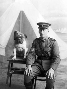 Melbourne, 1915. Studio portrait of a soldier believed to be Staff Sergeant Major Gabriel Albert Morgan and a four-legged companion. Picture: Australian War Memorial DA09725