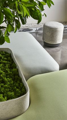 Biophilic design will be one of the top workplace design trends in 2018 Source by coalesse Healthcare Design, Workplace Design, Lobby Interior, Interior Architecture, Sofa Design, Furniture Design, Office Furniture, Design Design, Herb Garden In Kitchen
