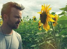 A beautiful flower gazing unto another ❤ Aaron Paul, Braking Bad, Breaking Bad Jesse, Jesse Pinkman, Bryan Cranston, Take Me Home, Best Memes, Pretty Face, Gorgeous Men