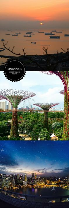 10 amazing views of Singapore from Gardens by the Bay, Marina Bay Sands, the Ritz Carlton, and Much more!