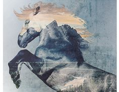 """Check out new work on my @Behance portfolio: """"Wild is the Wind"""" http://on.be.net/1fNRYFY"""