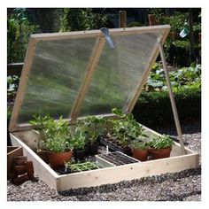 This cold frame will easily outlive the 3 year guarantee and the 4mm thick twin wall polycarbonate glazing in the adjustable roof - closed, ajar and fully open - allows plenty of light to reach the hardening off plants inside and with a raft of other features. http://www.harrodhorticultural.com/wooden-cold-frame-pid8337.html  Wooden Cold Frame - Harrod Horticultural (UK)