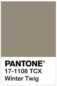 Image result for Winter Twig pantone