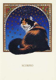 FRANCIEN VAN WESTERING - SCORPIO CAT