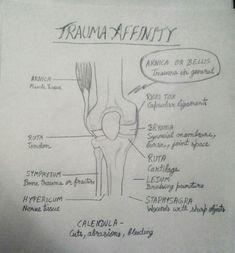 Trauma Affinity