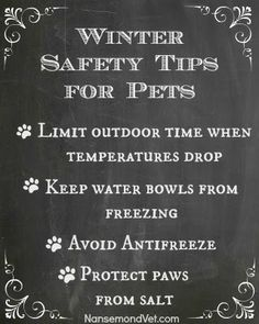 Pin by veterinarian friends of SNOUTschool.com at Nansemond Vets. Take care of your pets during this frigid weather! NansemondVet.com