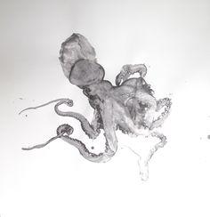 Octopus Drawings | Douglas White