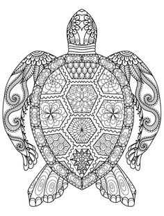 wood burning turtle pattern