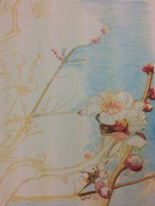 色鉛筆アートの世界-5ページ目