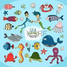 """Képtalálat a következőre: """"halak rajzolása"""""""