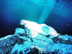 Carrière Morrison/épave d'avion #scubadiving #plongeesousmarine #avion #plane #submerged #epave (à Carrière Morisson)